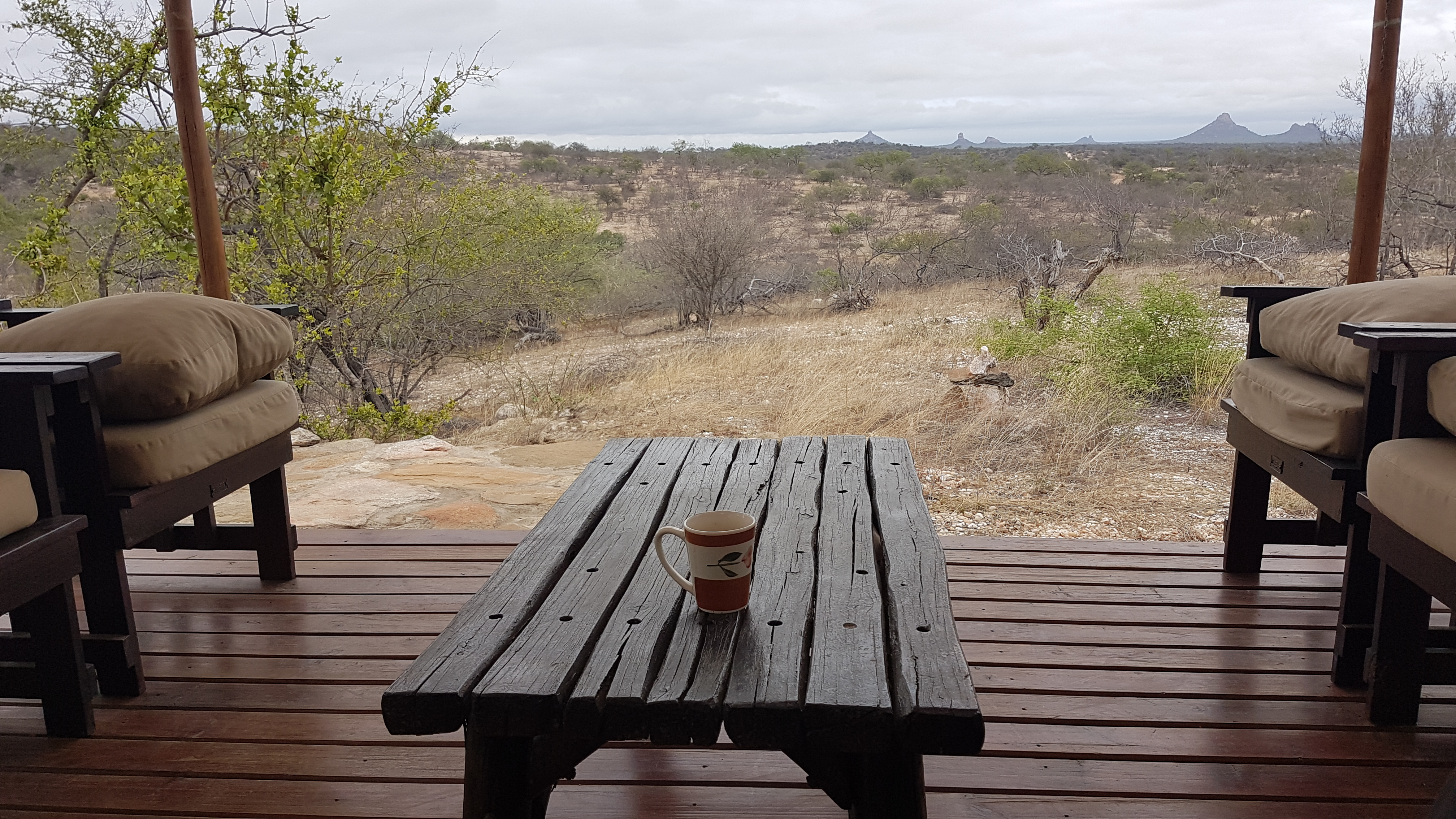 Wildlife Afrikas vom Deck des Busch Camps in Südafrika