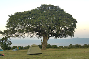Camping am Krater in Afrika - Ngorongoro in Tansania