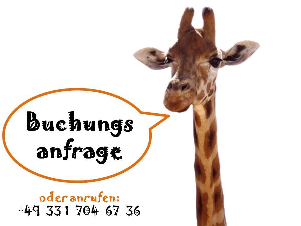 Ihre Anfrage zur Krüger Park Safari bei SafariScout.com